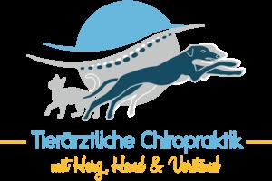 Logo Chiropraktik